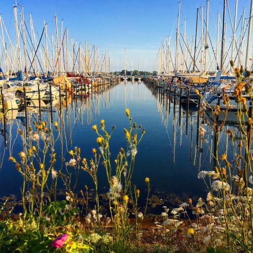 familienfreundliche Ferienwohnung Maasholm direkt an der Schlei mit Schleiblick